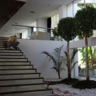 nuevo acceso a terraza